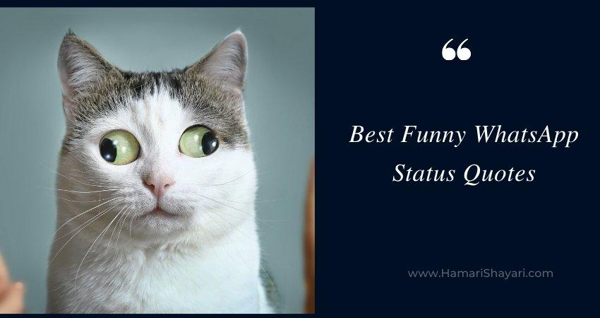 Best Funny WhatsApp Status Quotes